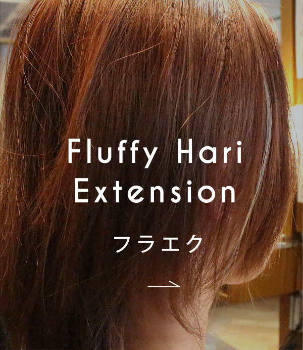 Fluffy Hari Extension フラエク